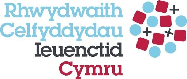 Youth Arts Network <b>Cymru highlights</b> amazing work in youth arts ...