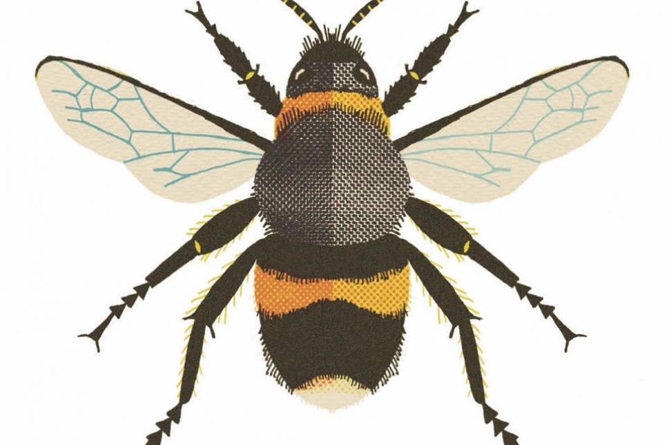 Digital illustration of a bee